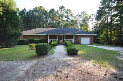 Blythewood Single Family Home For Sale: 1317 Loner