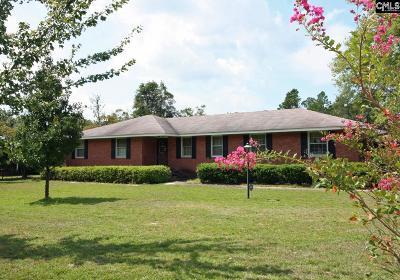 Wagener Single Family Home For Sale: 143 Garvin