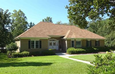 Lexington County, Richland County Single Family Home For Sale: 104 Summit Point