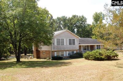 Columbia Single Family Home For Sale: 801 N Brickyard