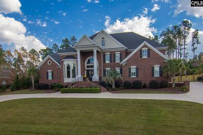 Lexington County, Richland County Single Family Home For Sale: 125 Island View