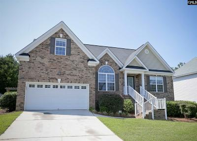 Irmo Single Family Home For Sale: 342 Ridge Run Trail