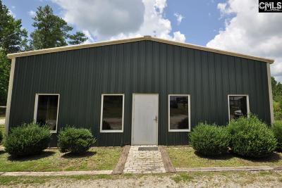 Monetta, Ridge Spring, Wagener, Johnston, Pelion, Newberry, Ward Commercial For Sale: 150 Wilson Park