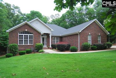 Chapin Single Family Home For Sale: 545 Indian Fork