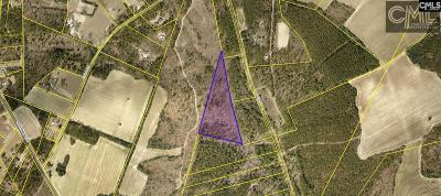 Monetta, Ridge Spring, Wagener, Johnston, Pelion, Newberry, Ward Residential Lots & Land For Sale: Terry