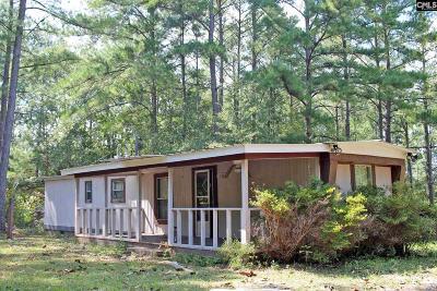 Lexington Single Family Home For Sale: 136 Ringo