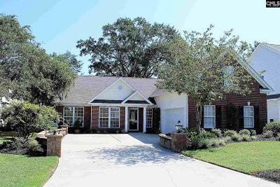 Lexington County Single Family Home For Sale: 105 Loskin