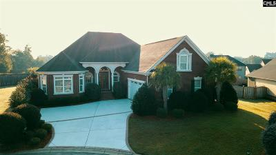 Lexington County Single Family Home For Sale: 105 Royal Creek