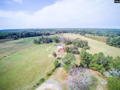 Lexington County Residential Lots & Land For Sale: 402 Haven