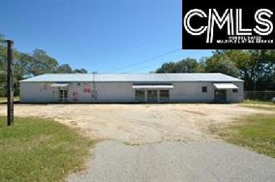 Monetta, Ridge Spring, Wagener, Johnston, Pelion, Newberry, Ward Commercial For Sale: 515 Pine