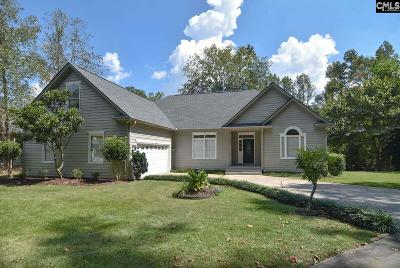 Lexington County Single Family Home For Sale: 100 Saluda View