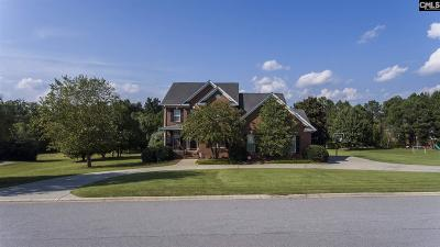 Lexington County Single Family Home For Sale: 418 Caro