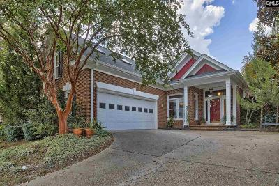 Spring Valley Single Family Home For Sale: 132 Spring Valley