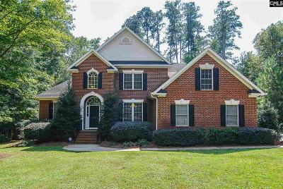 Lexington County Single Family Home For Sale: 108 Pointe Overlook