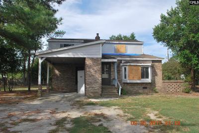 Lexington County Single Family Home For Sale: 383 Golden Jubilee