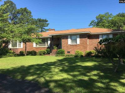 Cayce Single Family Home For Sale: 948 Bruce