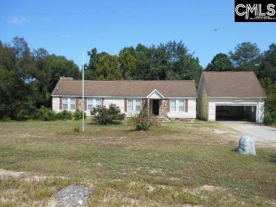 Lexington Single Family Home For Sale: 157 Wando