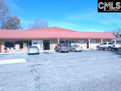 Batesburg SC Commercial For Sale: $259,000