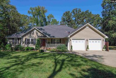 Lexington County Single Family Home For Sale: 7055 Nursery