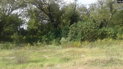 Residential Lots & Land For Sale: 319 Calhoun