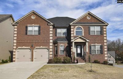 Lexington County Single Family Home For Sale: 131 Grey Oaks