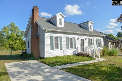 Single Family Home For Sale: 229 Mineral Springs