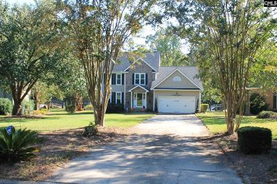 Lexington County, Newberry County, Richland County, Saluda County Single Family Home For Sale: 152 Rum Gully