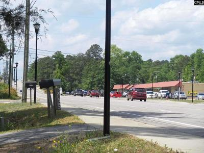 Cayce, S. Congaree, Springdale, West Columbia Residential Lots & Land For Sale: 3021 Platt Springs