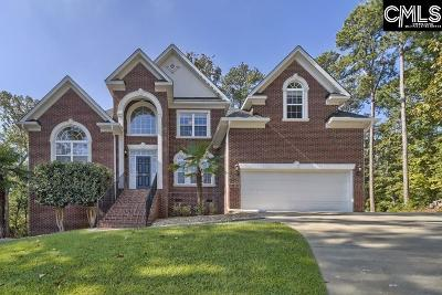 Chapin Single Family Home For Sale: 105 Summit View