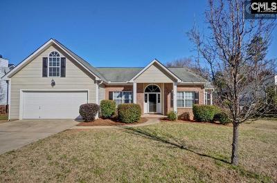 Irmo Single Family Home For Sale: 220 Walnut Grove