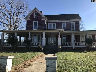 Saluda Single Family Home For Sale: 2248 Newberry Highway