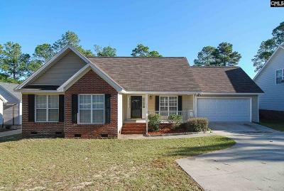 Lexington County, Richland County Single Family Home For Sale: 1212 Valhalla