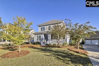 Chapin, Gilbert, Irmo, Lexington, West Columbia Single Family Home For Sale: 945 Battenkill