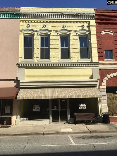 Monetta, Ridge Spring, Wagener, Johnston, Pelion, Newberry, Ward Commercial For Sale: 1211 Main
