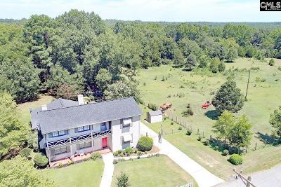 Blythewood, Ridgeway, Winnsboro, Columbia, Elgin, Ballentine, Eastover, Forest Acres, Gadsden, Hopkins Single Family Home For Sale: 424 Bratton