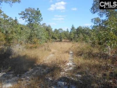 Monetta, Ridge Spring, Wagener, Johnston, Pelion, Newberry, Ward Residential Lots & Land For Sale: 755 Big Branch