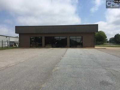Monetta, Ridge Spring, Wagener, Johnston, Pelion, Newberry, Ward Commercial For Sale: 14047 C R Koon