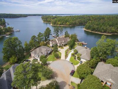 Lexington County Single Family Home For Sale: 232 Lookout Pointes