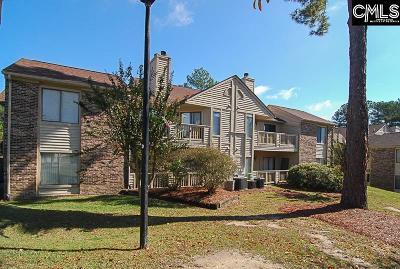 Lexington County, Richland County Condo For Sale: 229 Windsor #4-C
