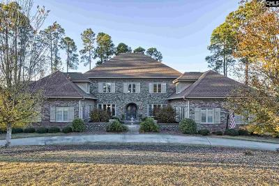 Lexington County, Richland County Single Family Home For Sale: 151 Island View