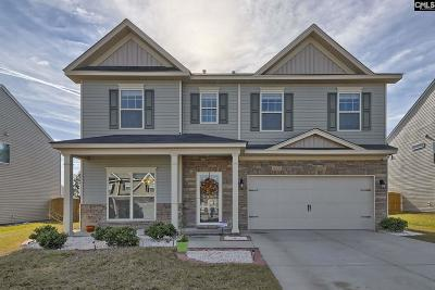 Lexington Single Family Home For Sale: 217 Viking