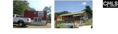 Commercial For Sale: 2620 Columbia Hwy N