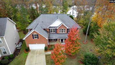 Chapin Single Family Home For Sale: 43 Wave Dancer
