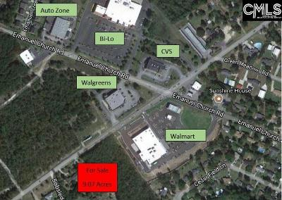 Lexington County Residential Lots & Land For Sale: 1051 Old Barnwell