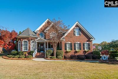 Lexington Single Family Home For Sale: 304 Vista Springs