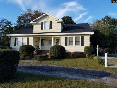 Chapin, Gilbert, Irmo, Lexington, West Columbia Single Family Home For Sale: 642 Highway 378