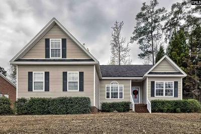 Lexington Single Family Home For Sale: 143 Oldtown