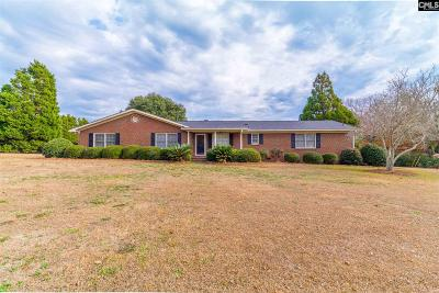 Lexington County Single Family Home For Sale: 352 Park