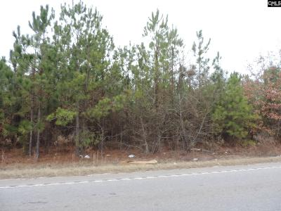Lexington County Residential Lots & Land For Sale: 1947 Old Two Notch