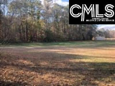 Lexington County Residential Lots & Land For Sale: 1900 Hope Ferry